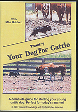 Training Your Dog for Cattle by Mike Hubbard