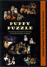 Puppy Puzzle: Evaluating the Structural Quality of Puppies by Bob & Pat Hastings