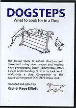 Dogsteps: What to Look For In A Dog by Rachel Page Elliott