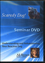 Scaredy Dog! Understanding and Rehabilitating Your Reactive Dog by Ali Brown