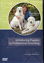 Introducing Puppies to Professional Grooming by Melissa Verplank