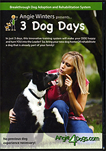 3 Dog Days - Breakthrough Dog Adoption and Rehabilitation System by Angie Winters