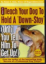 Teach Your Dog to Hold a Down-Stay by Adam Katz