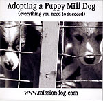 Adopting a Puppy Mill Dog: Everything You Need to Succeed by Miscellaneous