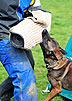 Training the New Schutzhund Helper by Ed Frawley