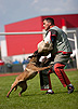 Schutzund the Dog Sport by Ed Frawley