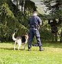 Training Off-Leash Obedience to Police Service Dogs by Ed Frawley