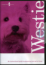 Grooming a Westie by Miscellaneous