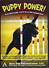 Puppy Power! - Give Your Puppy a Paw Up on the Competition by Petra Ford P.T., CCRT